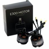 Мотор E300 920Kv (CCW)